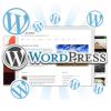 ロリポップは最もwordpress初心者向けなレンタルサーバー!